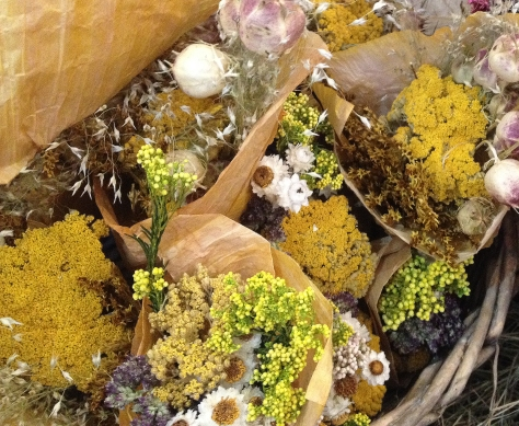 yellow dried flowers