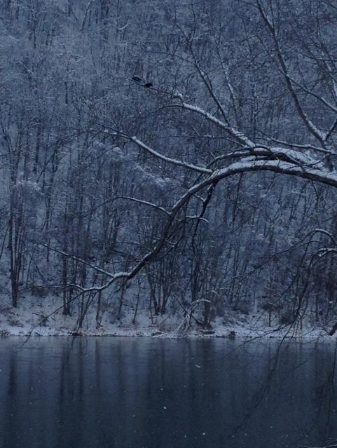 blue light of winter
