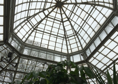 top of greenhouse