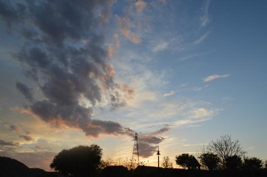sky w silhouettes