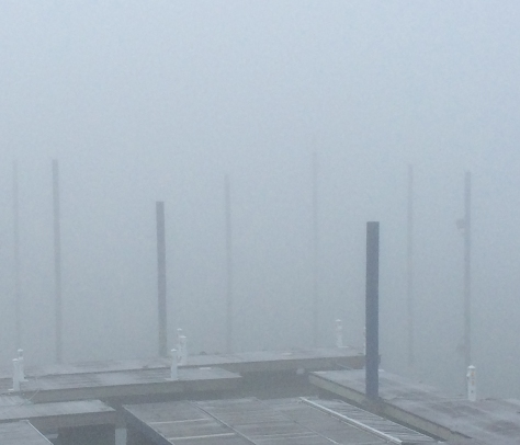 fog-on-the-docks