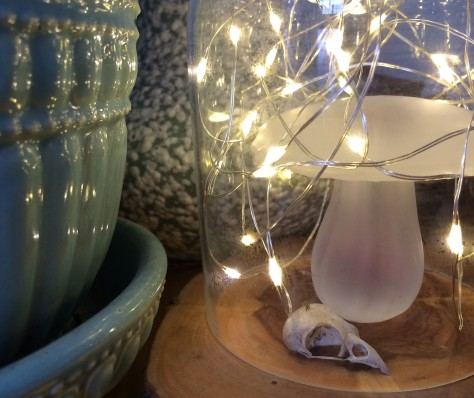 fairy-lights2