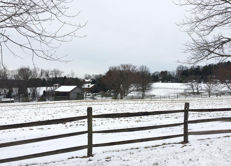 farm-in-winter