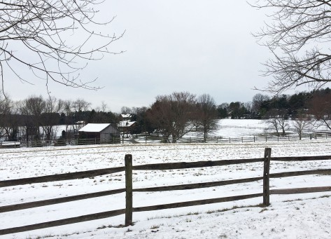 farm-in-winter