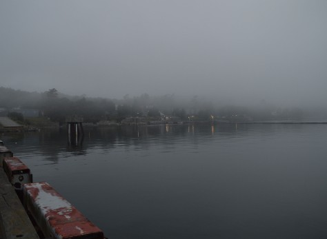 maine-on-water-w-fog