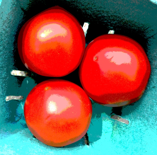 tomatoes posterized