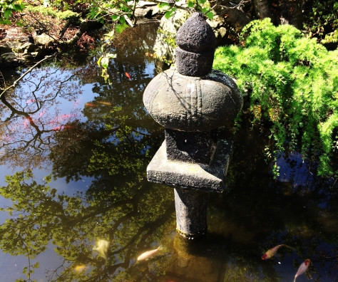 japonese pond