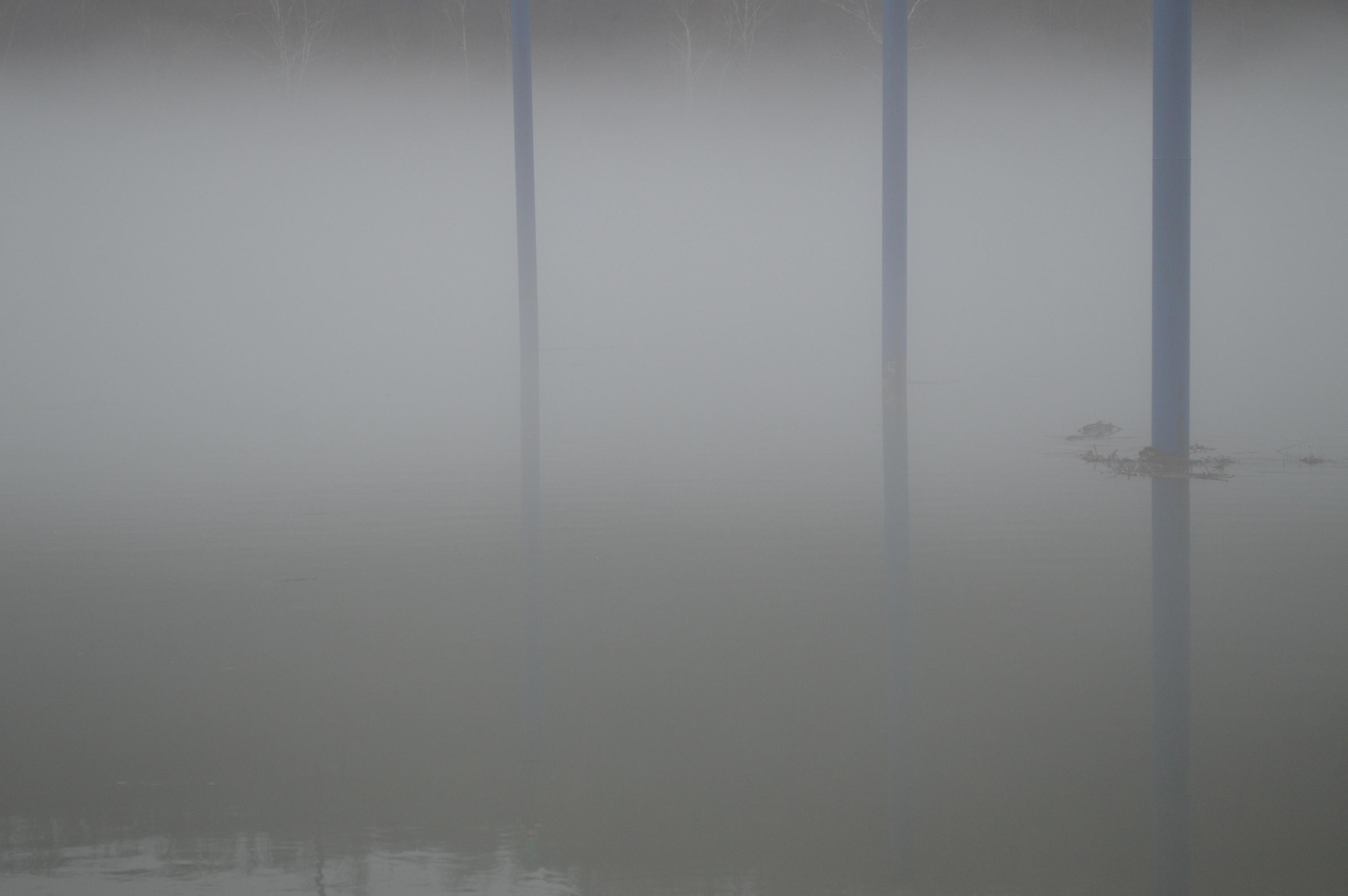 fog on the river w blue poles