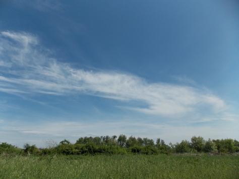 a sky in june