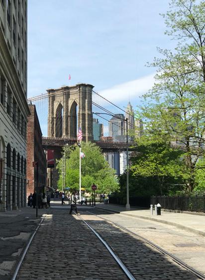 brooklyn bridge neve