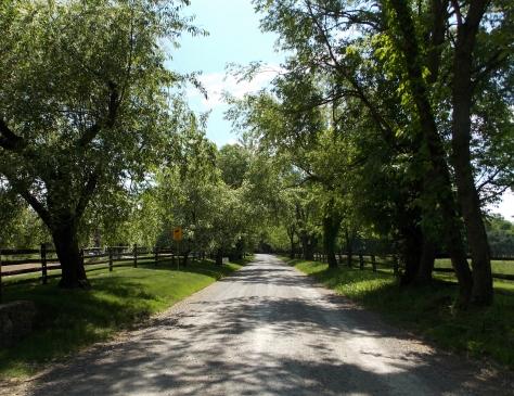 path at barkee