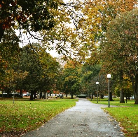 north side park