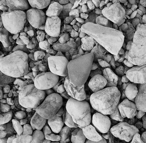 blwh rocks