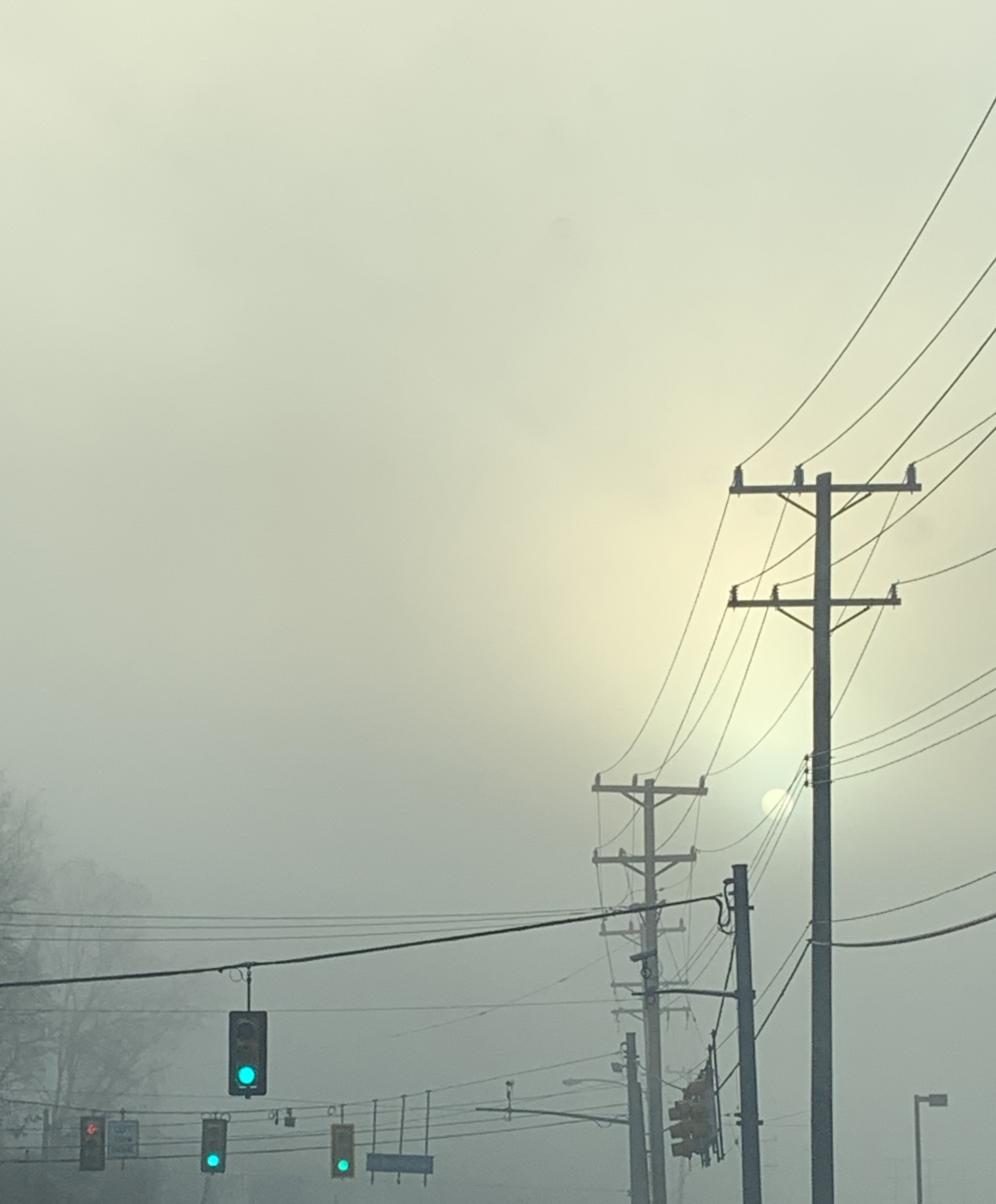 telephone wires in the fog